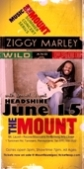 June 15 - Ziggy Marley w/ Headshine @ Mt. Laurel Performing Arts Center in Pennsylvania at 7pm!